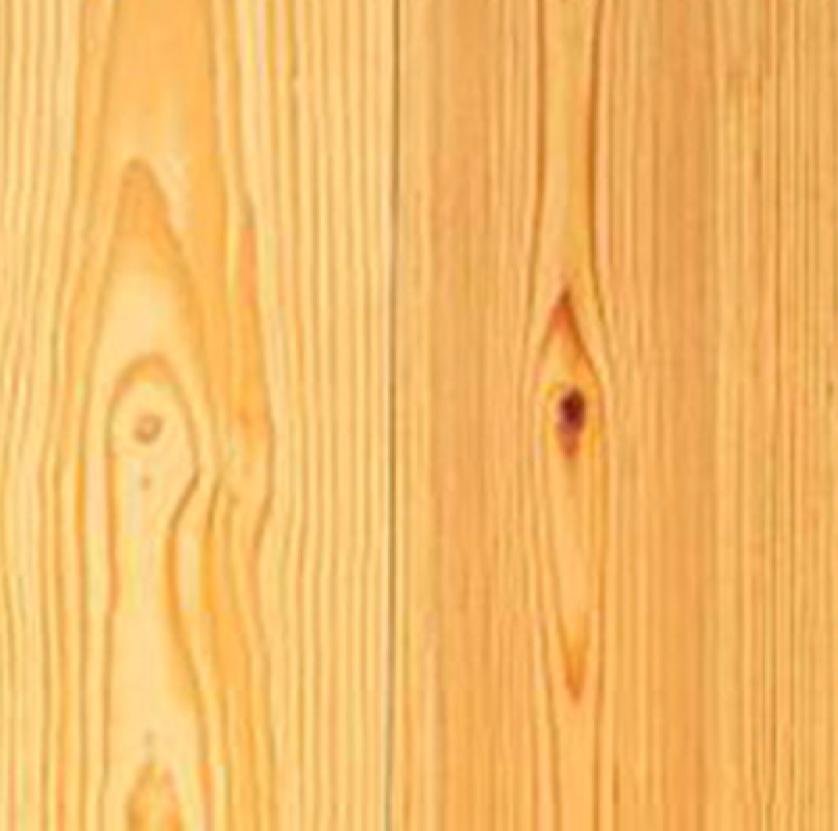 Dougfur Pine