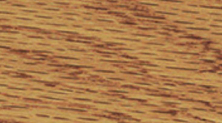 Golden Pecan 245