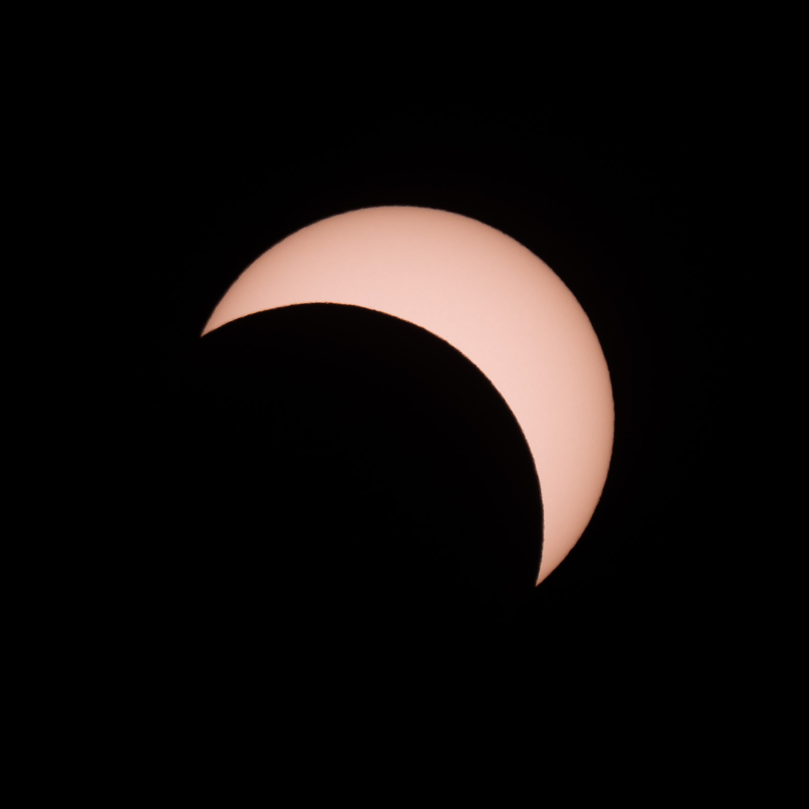 Partial Eclipse - f/11 | ISO100 | 1/500 secs + solar filter