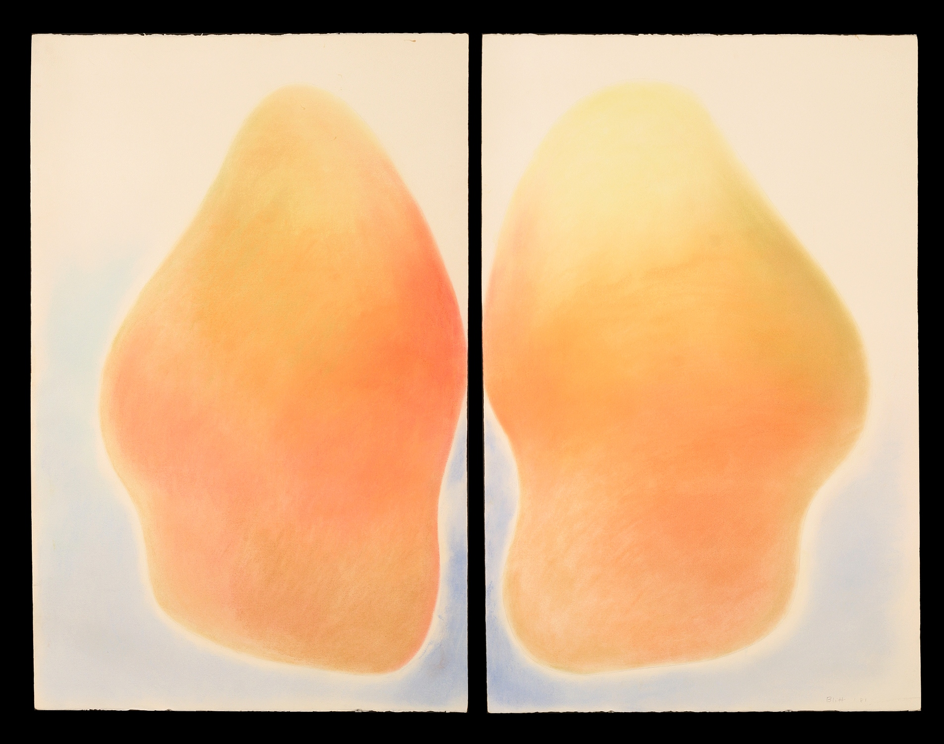 1981.0077  1981, pastel on paper - diptych, 40x26 in (each piece)