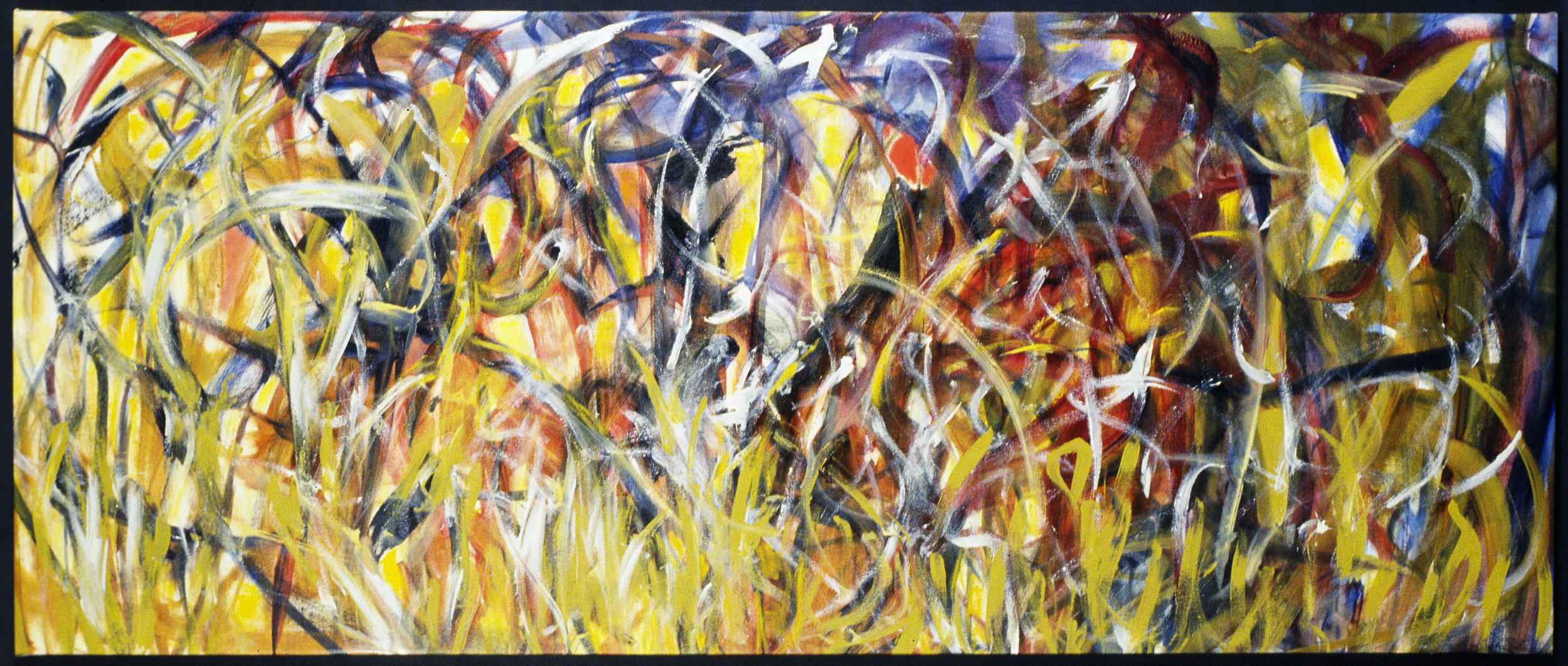 Field of Glory  2002, acrylic-oil on canvas, 27x66 in