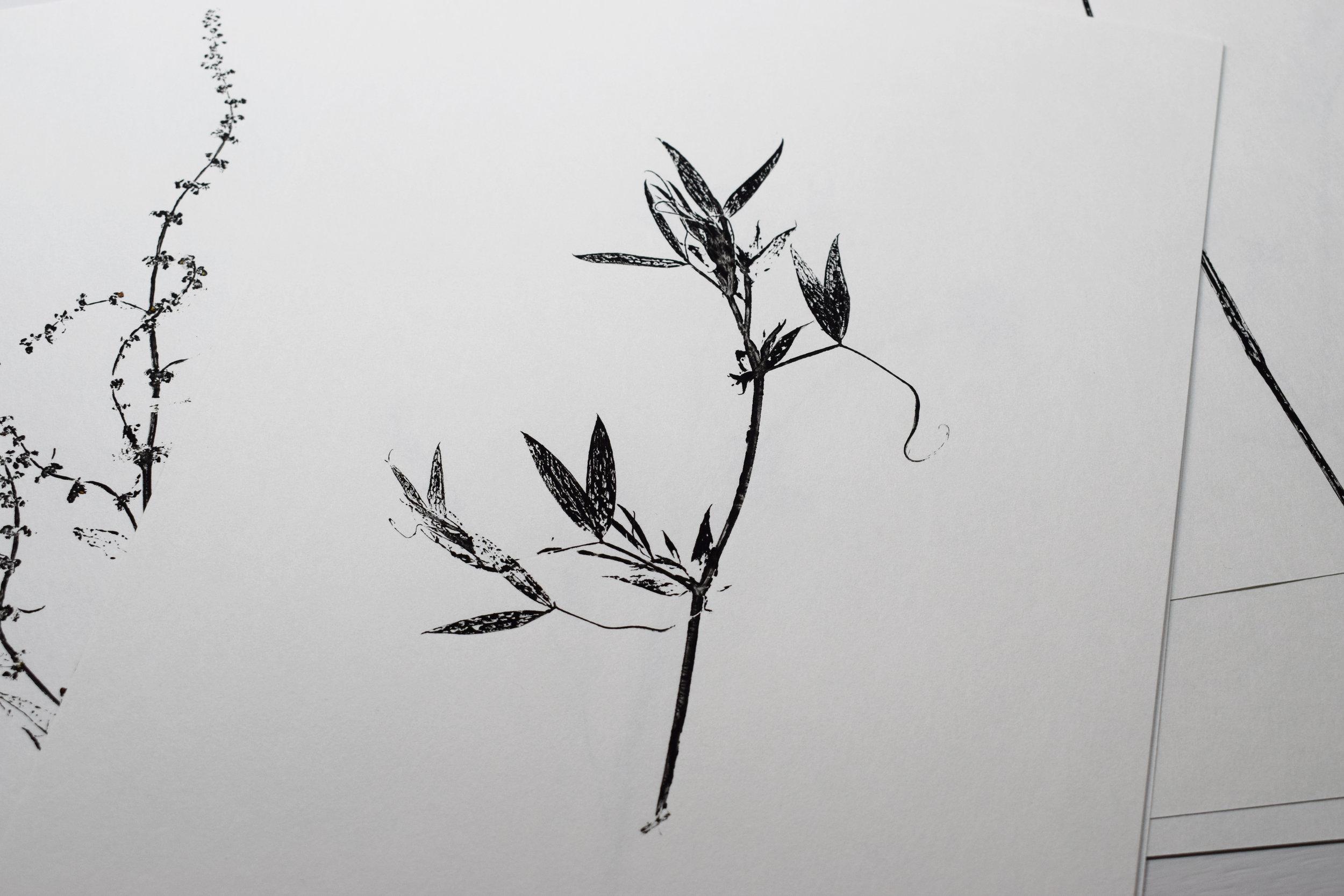 06 (2).jpg