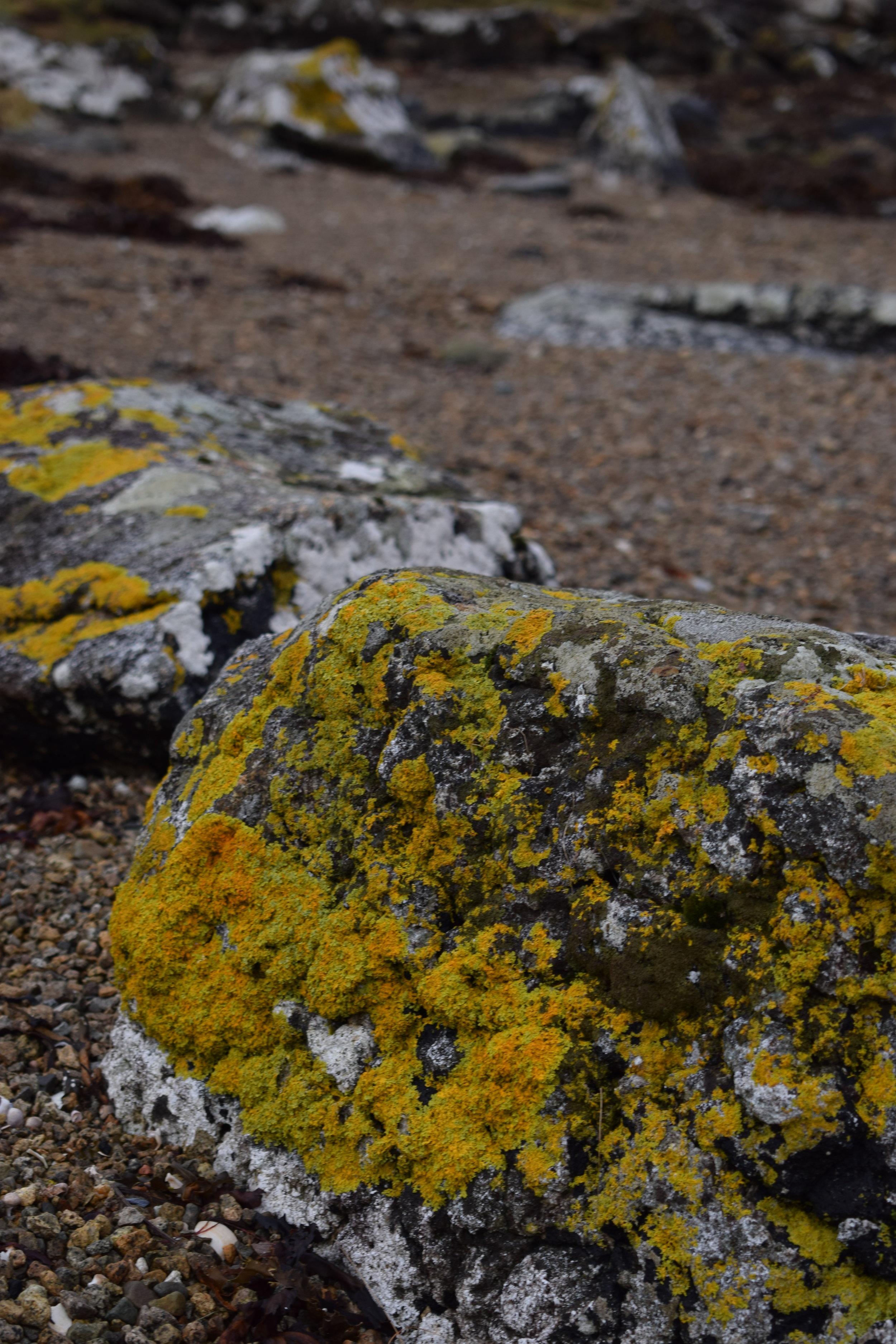 Luib rocks.JPG