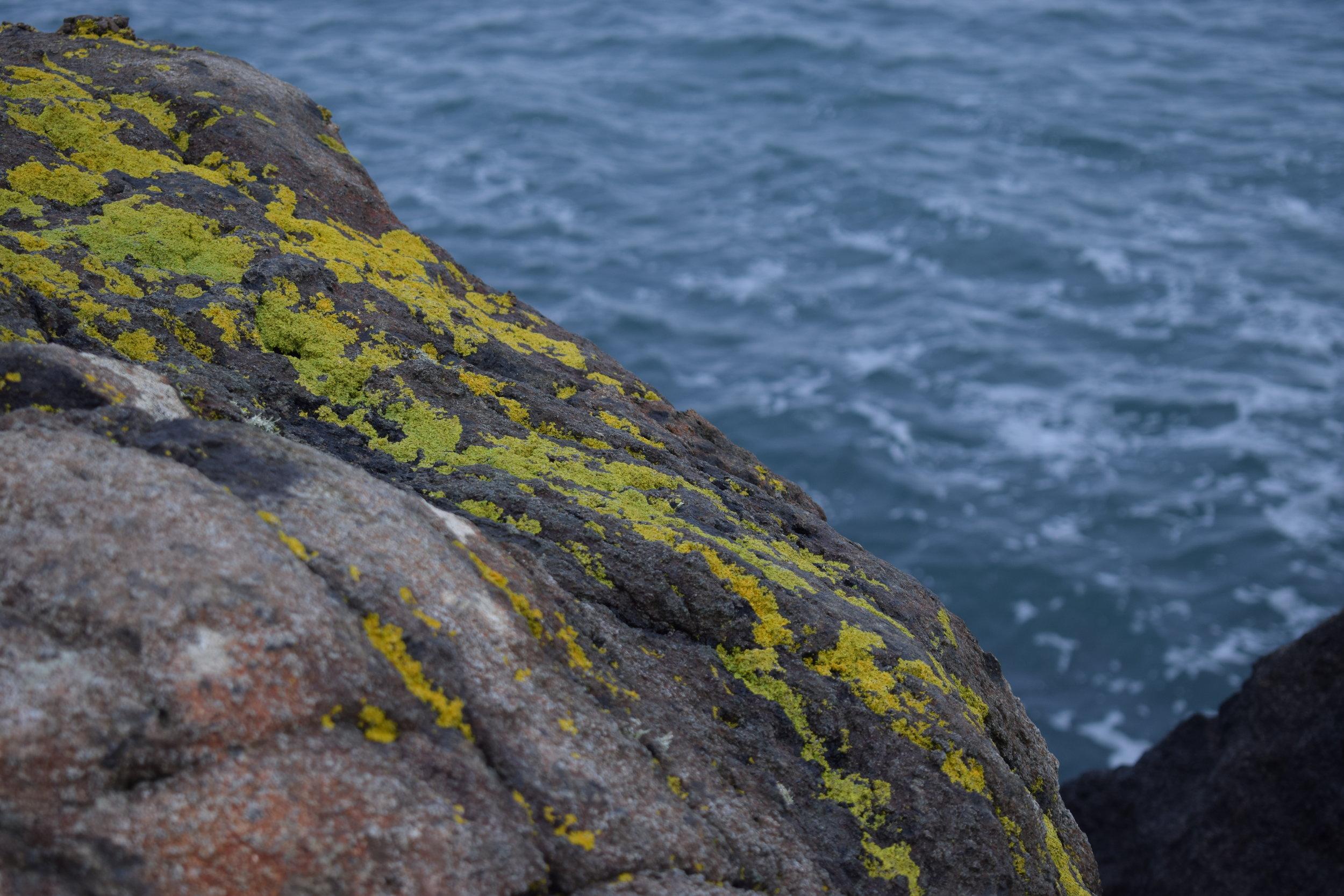 searock.JPG