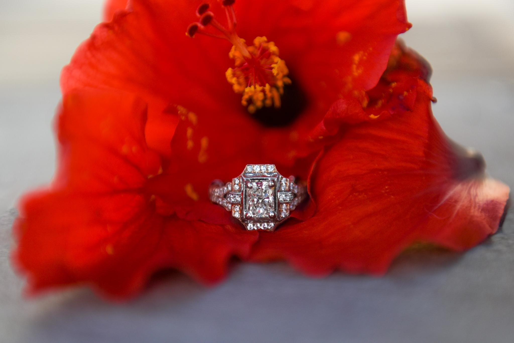 ©ISG-Engagement-M&O (1 of 1)-5.JPG