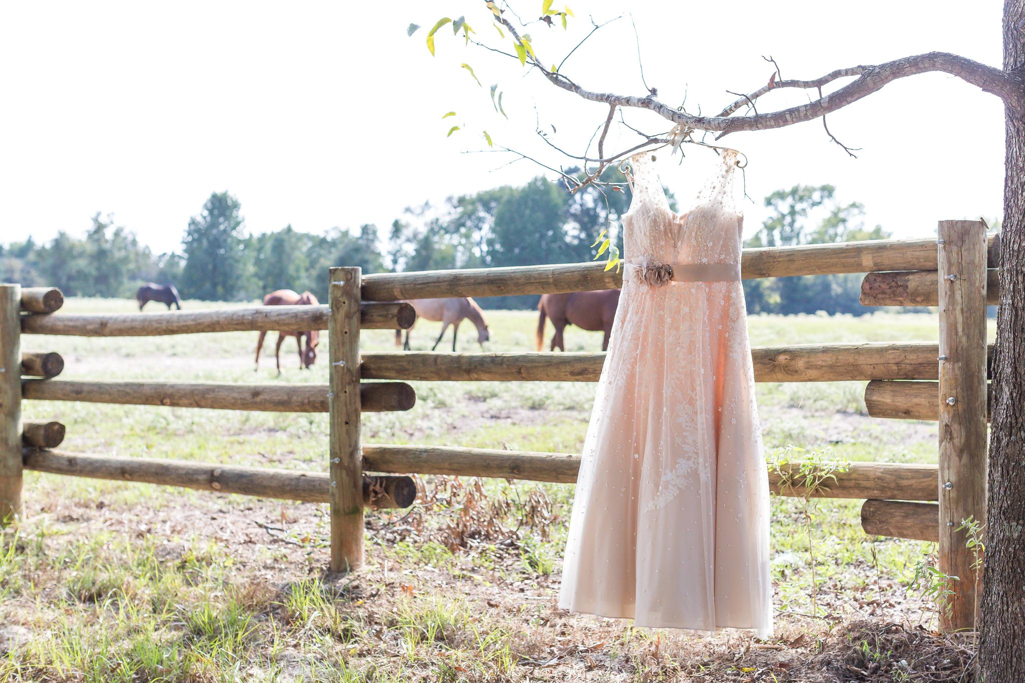 Daniel & Kati Wedding 10-7-2017-5556.jpg