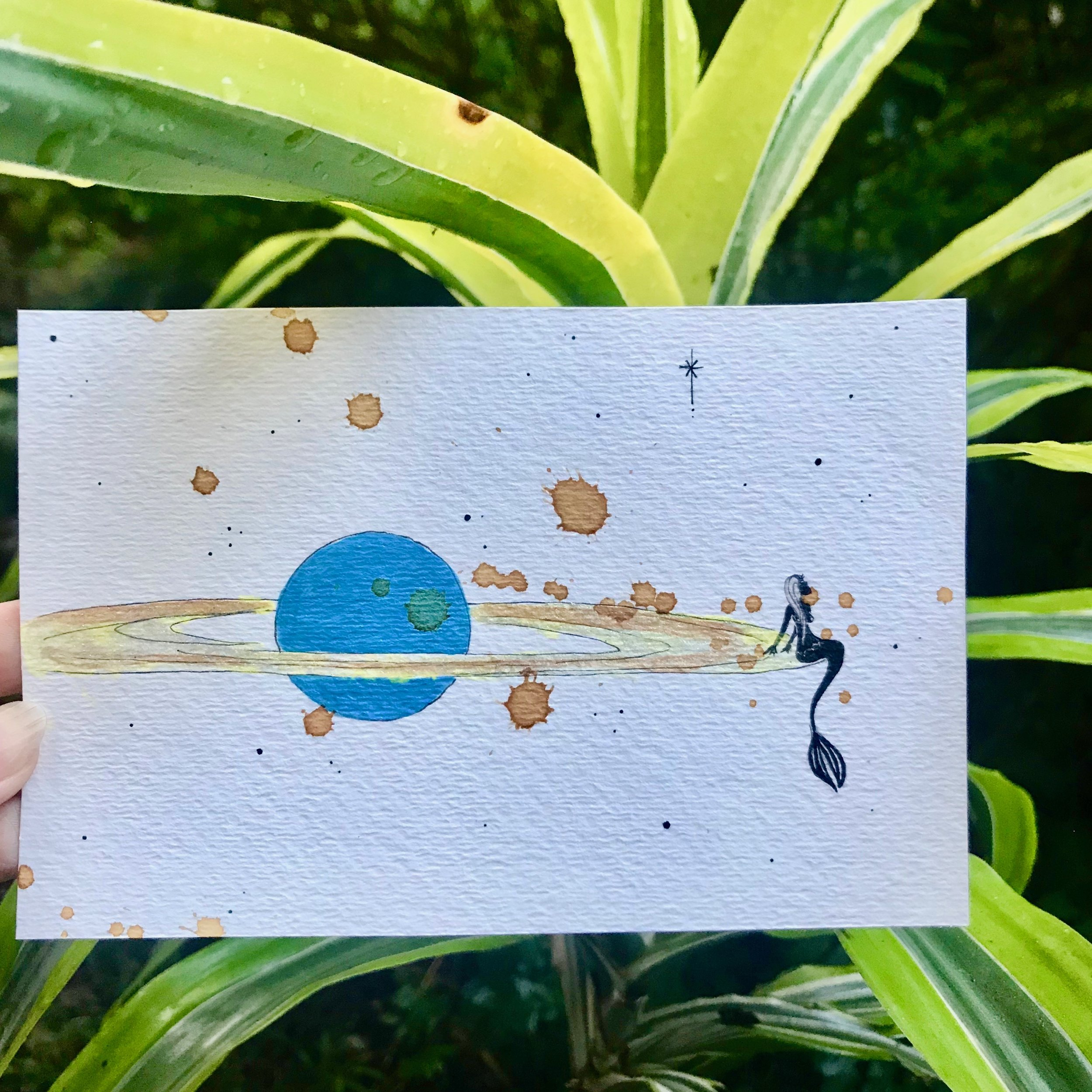 Saturn mermaid plant.jpg