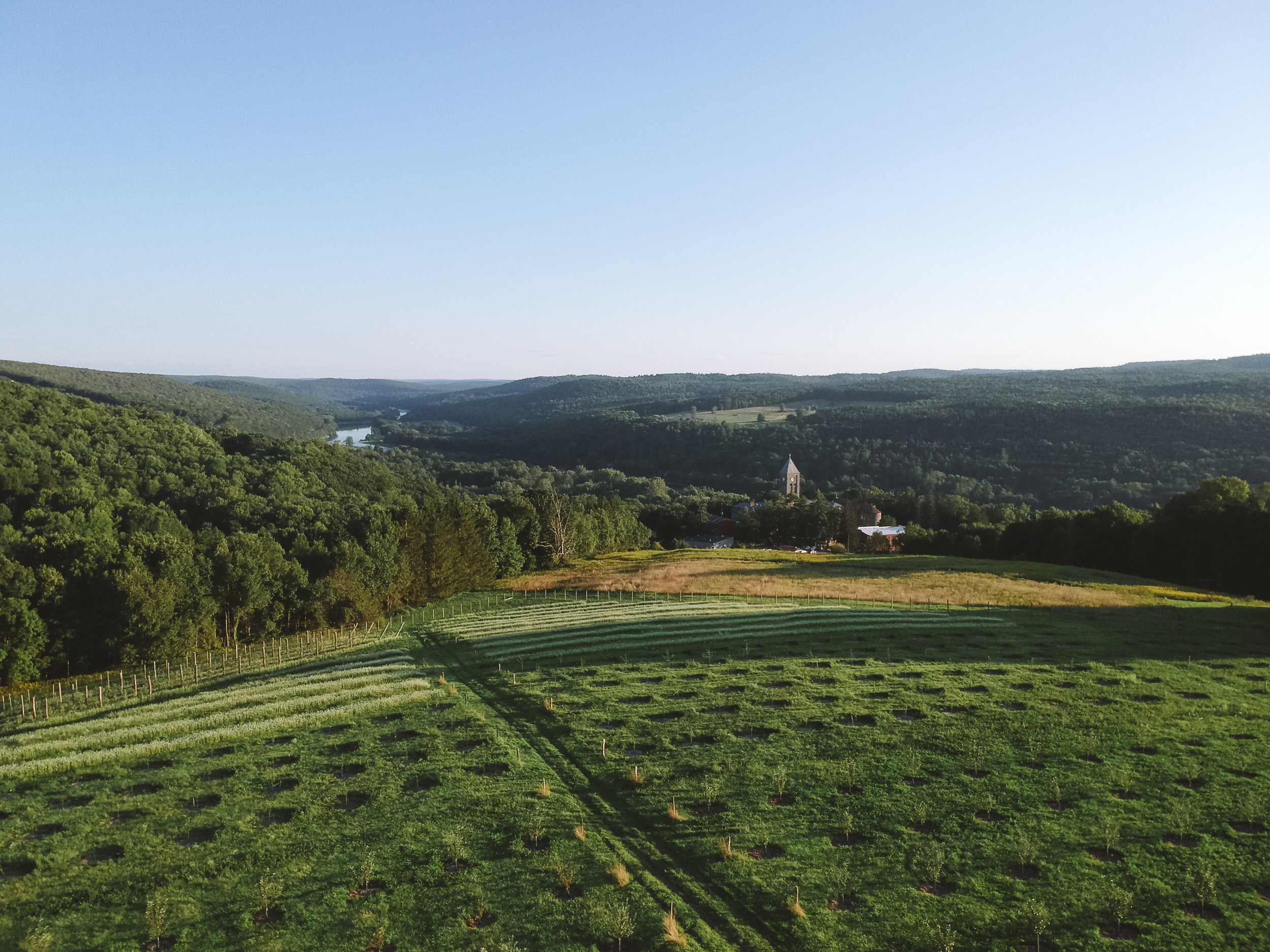 seminary_hill_summer_drone-6.jpg