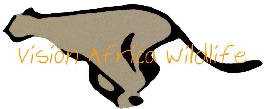 vision-africa-wildlife.jpg