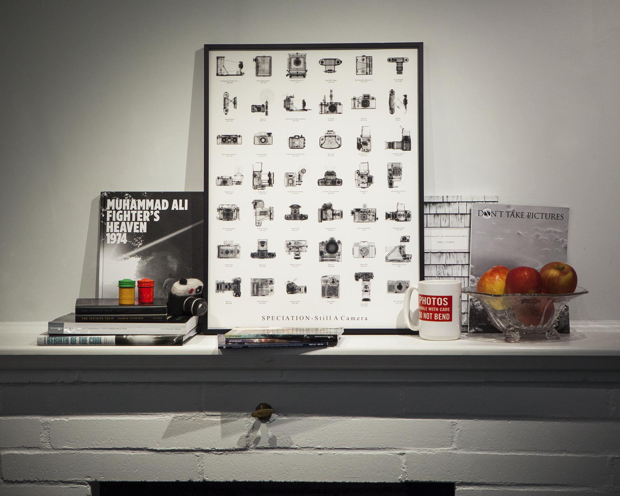 Typology Installation.jpg