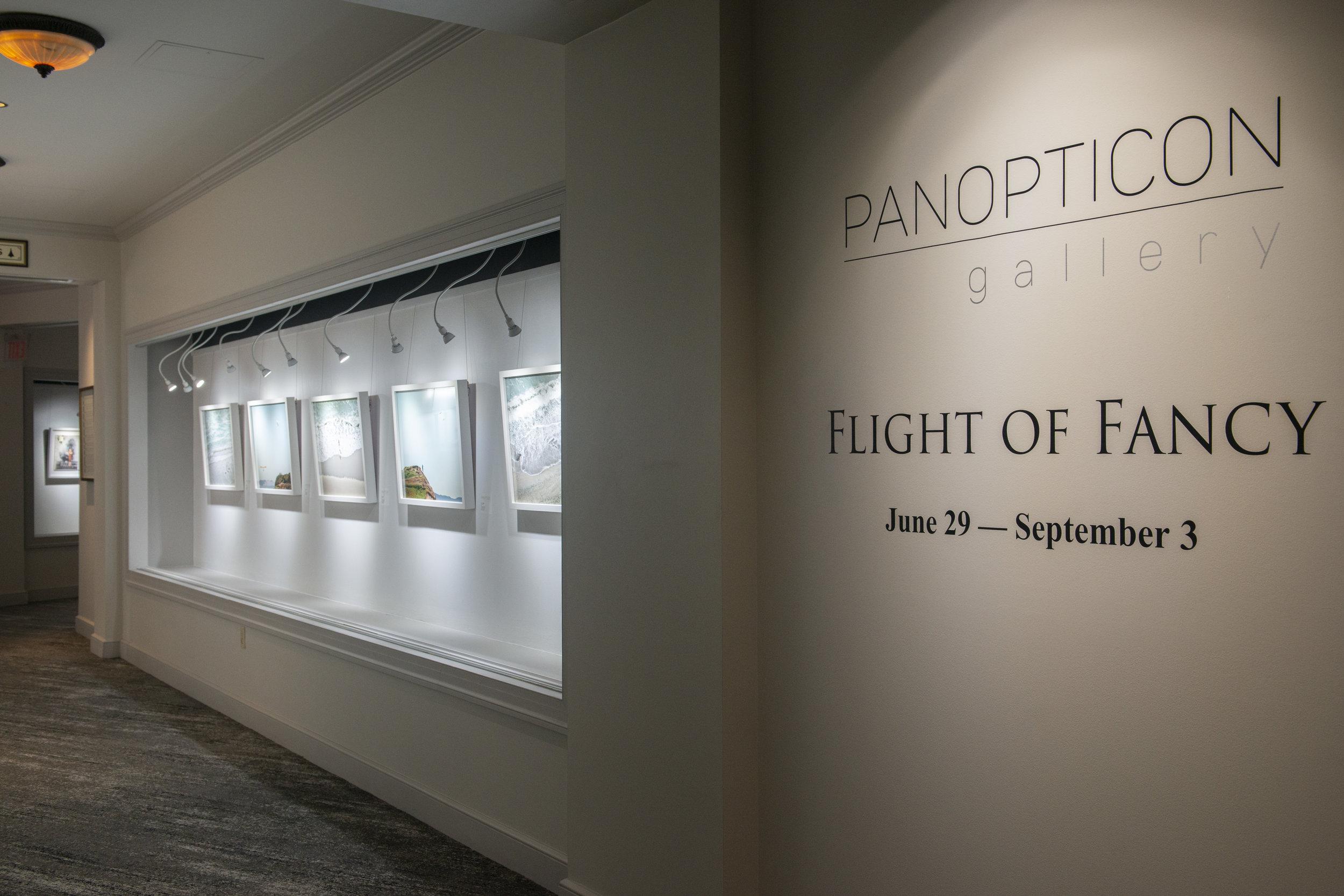 Flight of Fancy_10.JPG