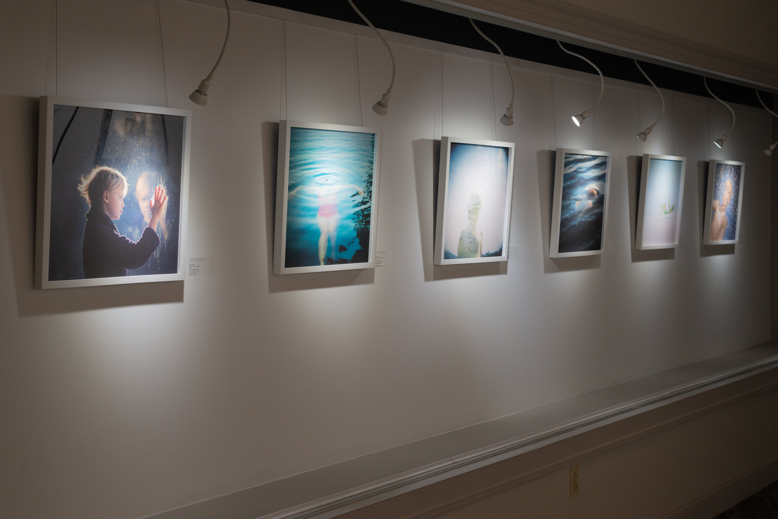 Cate Wnek Exhibition photo