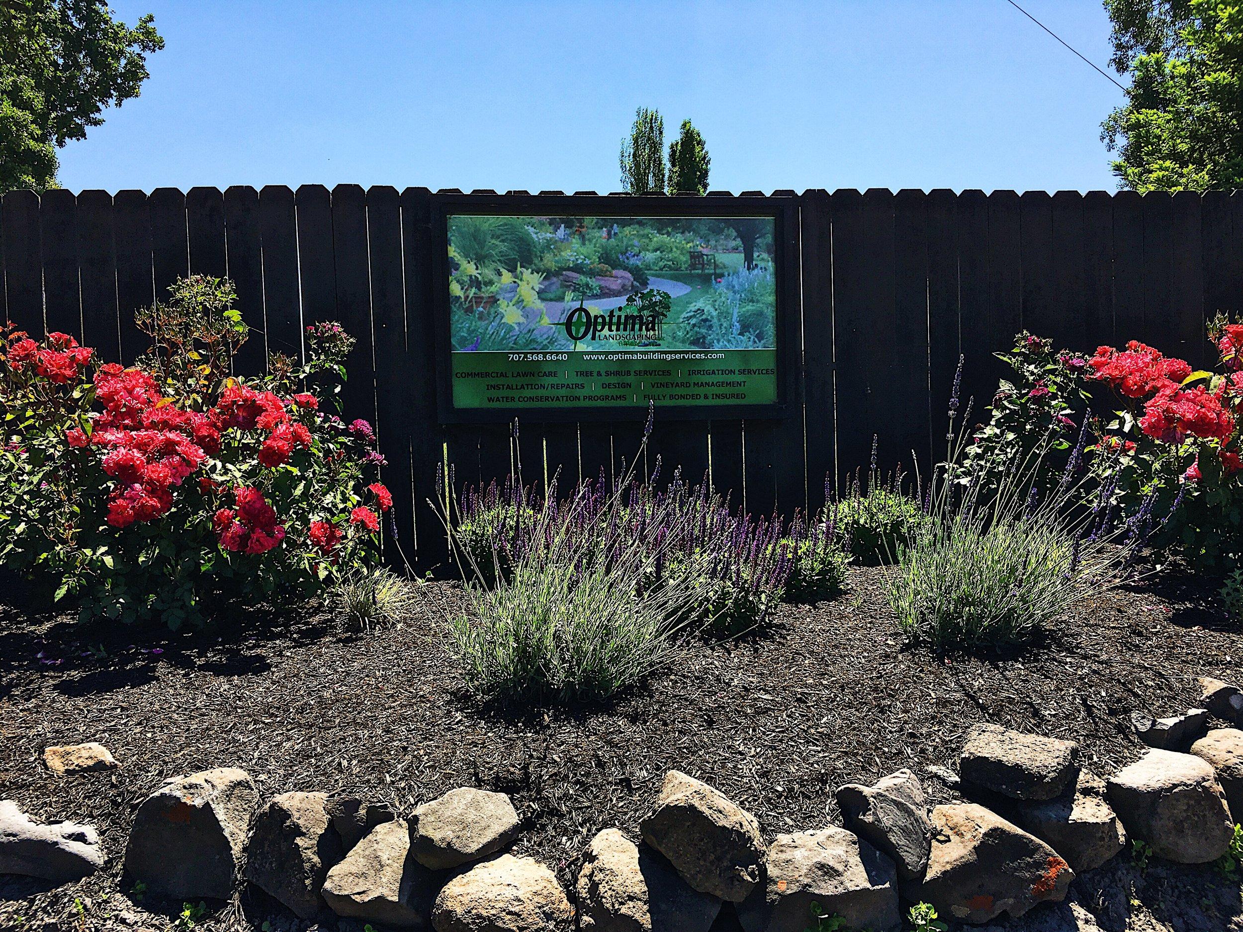 Santa Rosa Landscaping