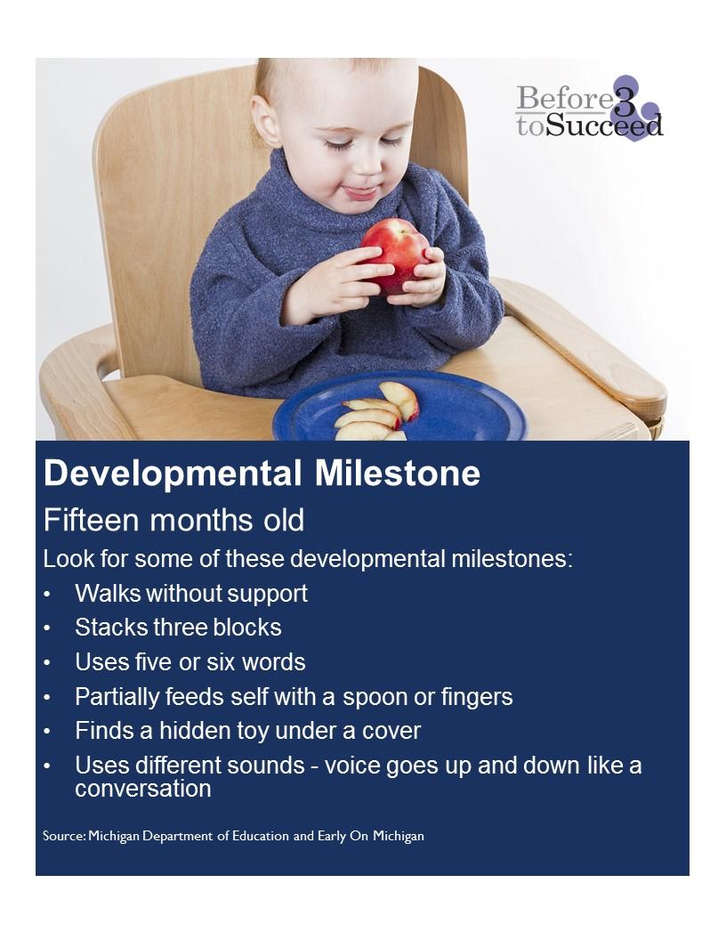 Developmental Milestone 15 months.jpg