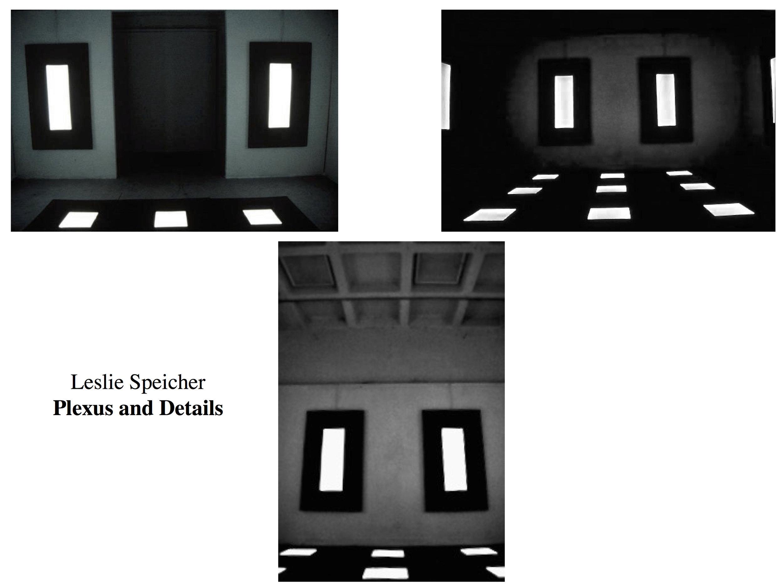 L. Speicher Plexus and Details.jpeg