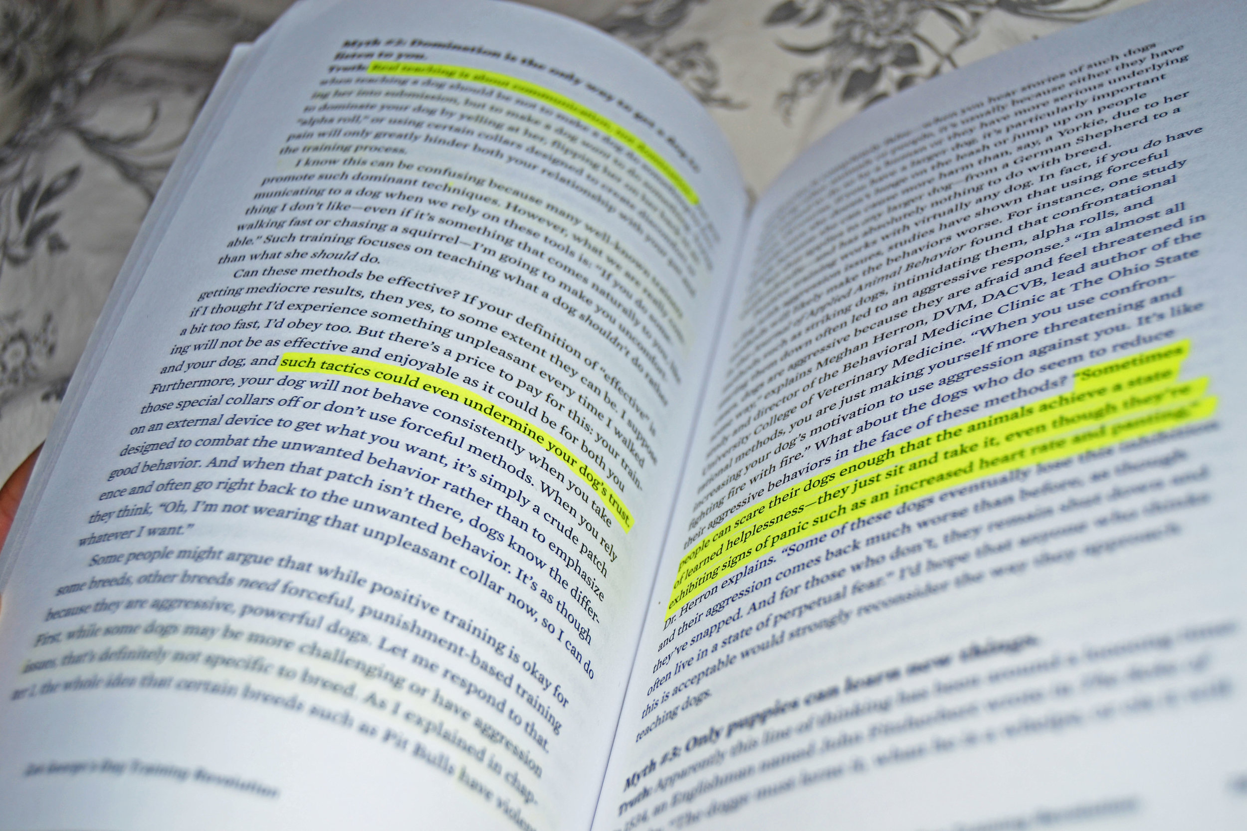Zak-book-highlight.jpg