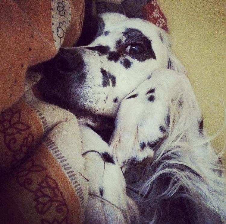 Sweet angel lady. she was such a cuddle bug. <3