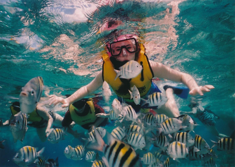 reef-snorkeling-377390_1920-sm.jpg