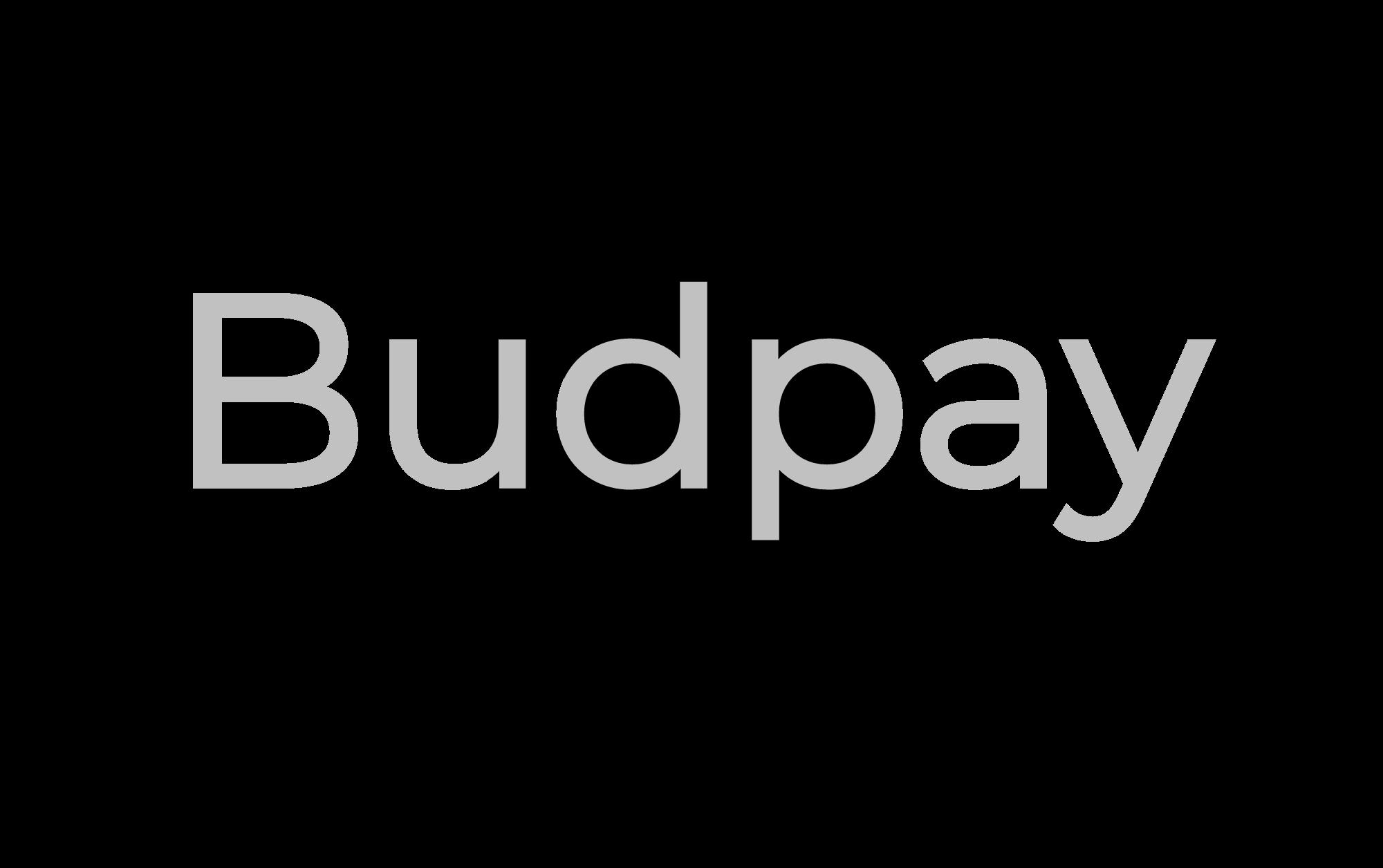 Copy of Copy of Budpay