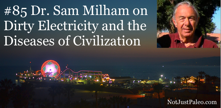 Dr-Sam-Milham-on-Dirty-Electricity-and-the-Diseases-of-Civilization.jpg