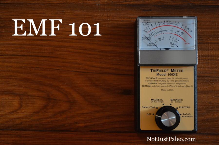 EMF-101.jpg