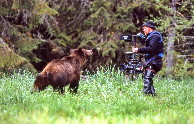 Co-Producer 'GRIZZLY : Face to Face' BBC1/Discovery 1999 - A 50' Special about the grizzly bears of British Columbia and Alaska, narrated by Sir David Attenborough.Co-Producers : Jeff and Sue TurnerExecutive Producer : Neil NightingaleAwards: BAFTA finalist for Photography (factual).