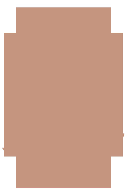 LZ_HOLOS_Monogram_TanPeach_Rough_Outline.png