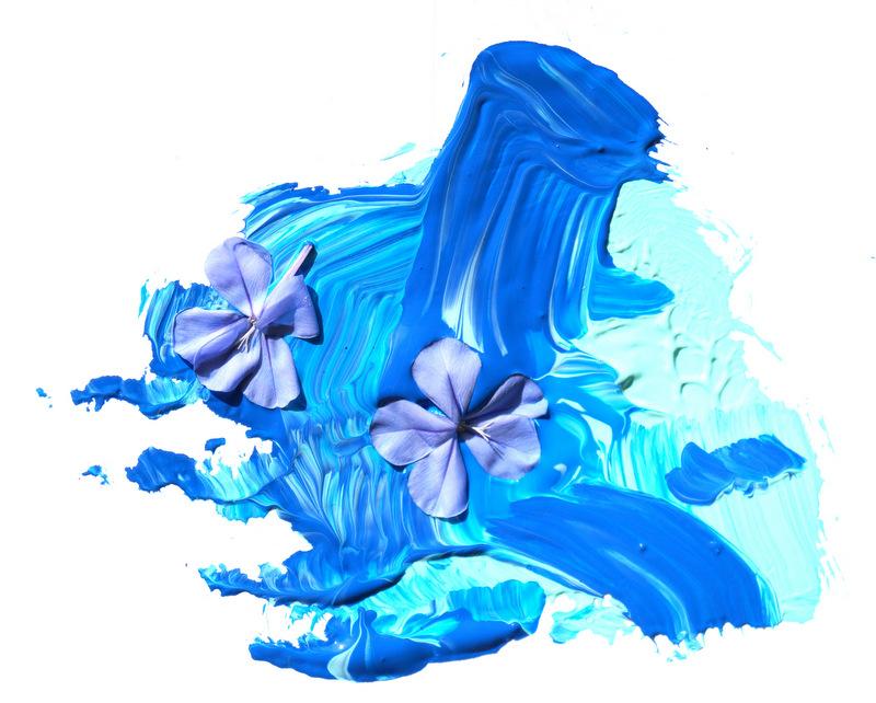phillips_johnston_blog_beauty_in_blue