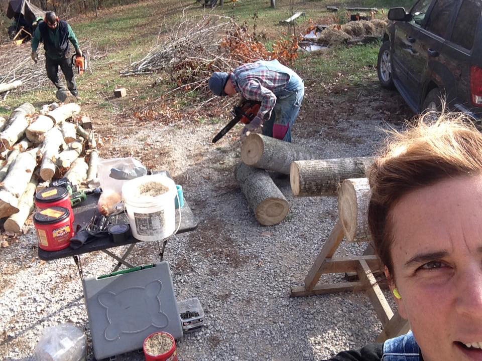 Bob Martin, Carrie Brunk, and Nicole Garneau inoculate mushroom logs. (photo by Nicole Garneau)