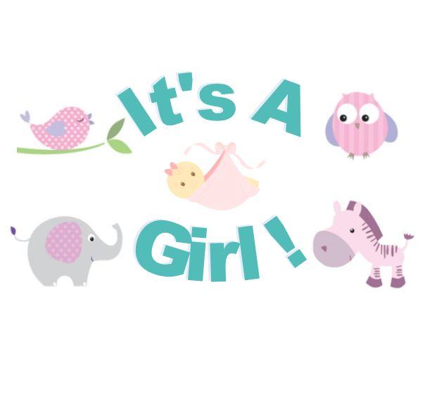 Baby Girl Shower.JPG