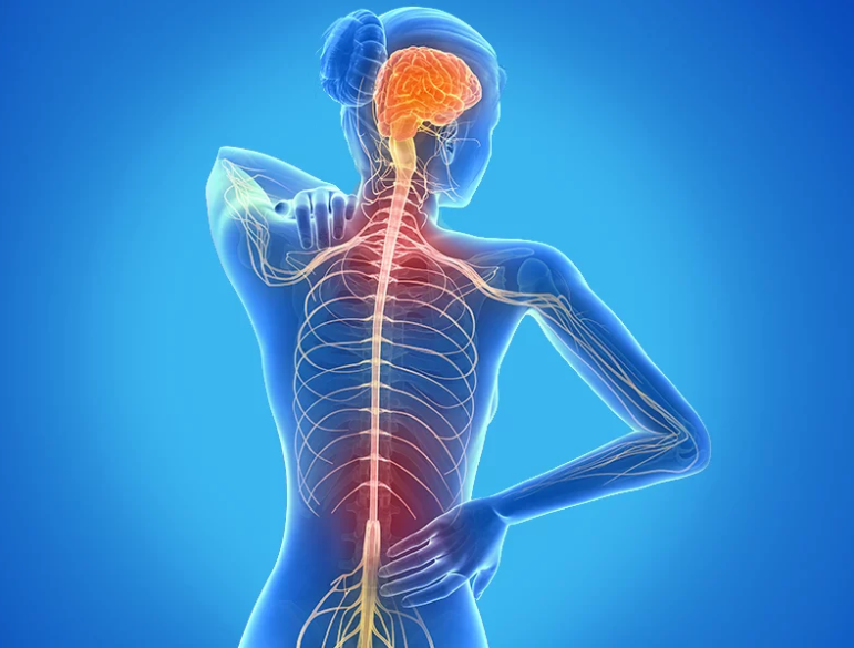 SPINAL PAIN.png