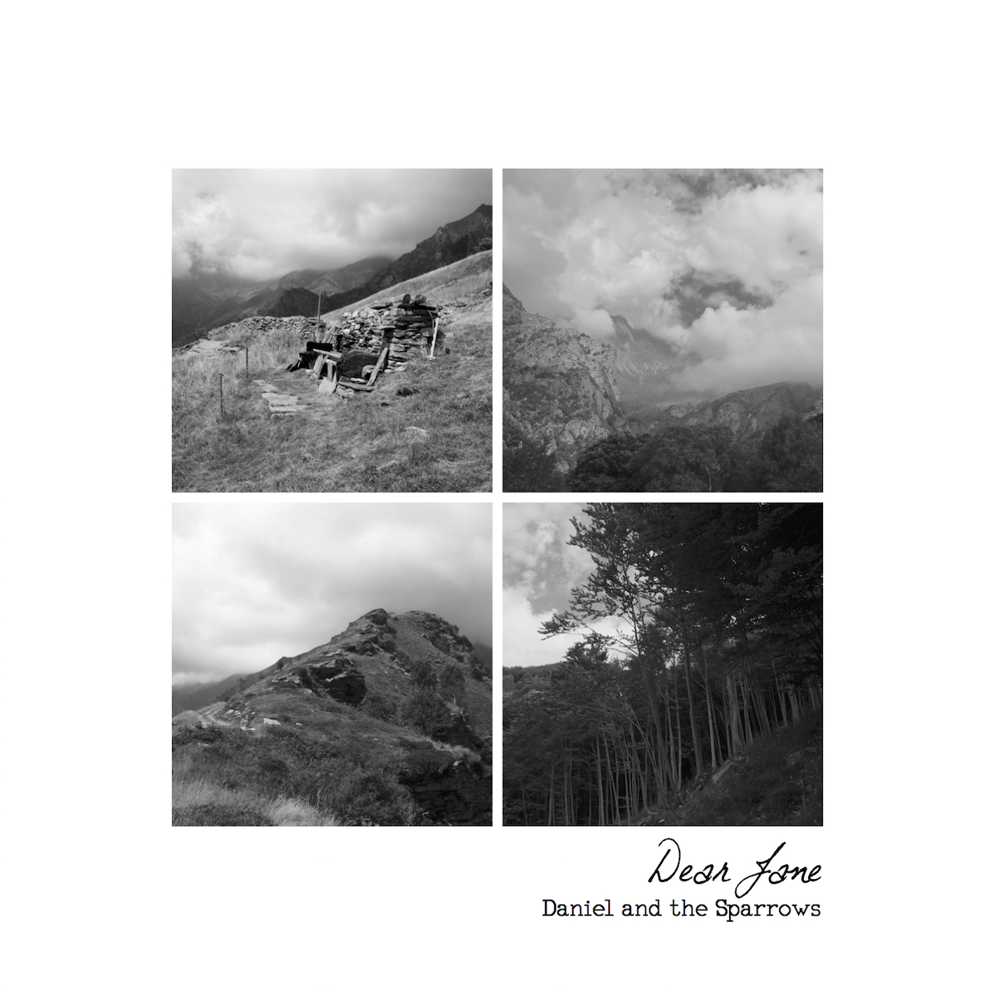 Dear Jane album art CD.jpg