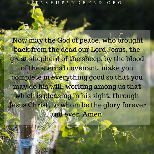 stories of grace images (1).png