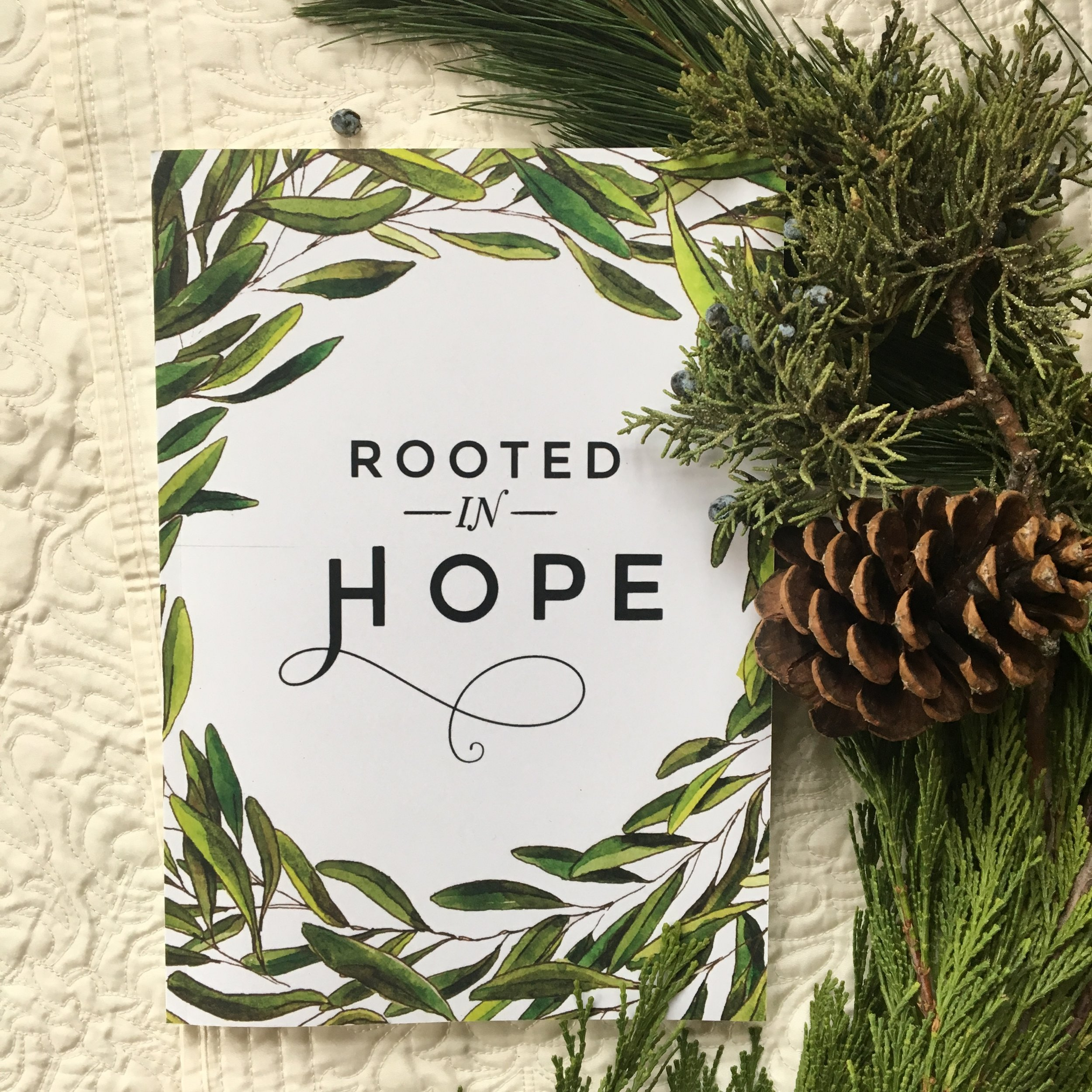 Rooted in Hope - A newly revised bestseller, Rooted in Hope is a 33-day Advent and Christmas study that extends from November 30 to January first. In a look at Scriptures that tell the stories of prominent biblical figures, this study echoes and expands upon the popular Advent tradition of a Jesse tree. For each day, you'll find Scripture, a devotional essay, pages for guided lectio divina, and space to organize your days. Journaling pages and useful planning pages feature clear and elegant design, exquisite hand-drawn illustrations, and gorgeous calligraphy. A handy companion for Advent and Christmas seasons, the book will become a treasured keepsake for the woman who uses it.