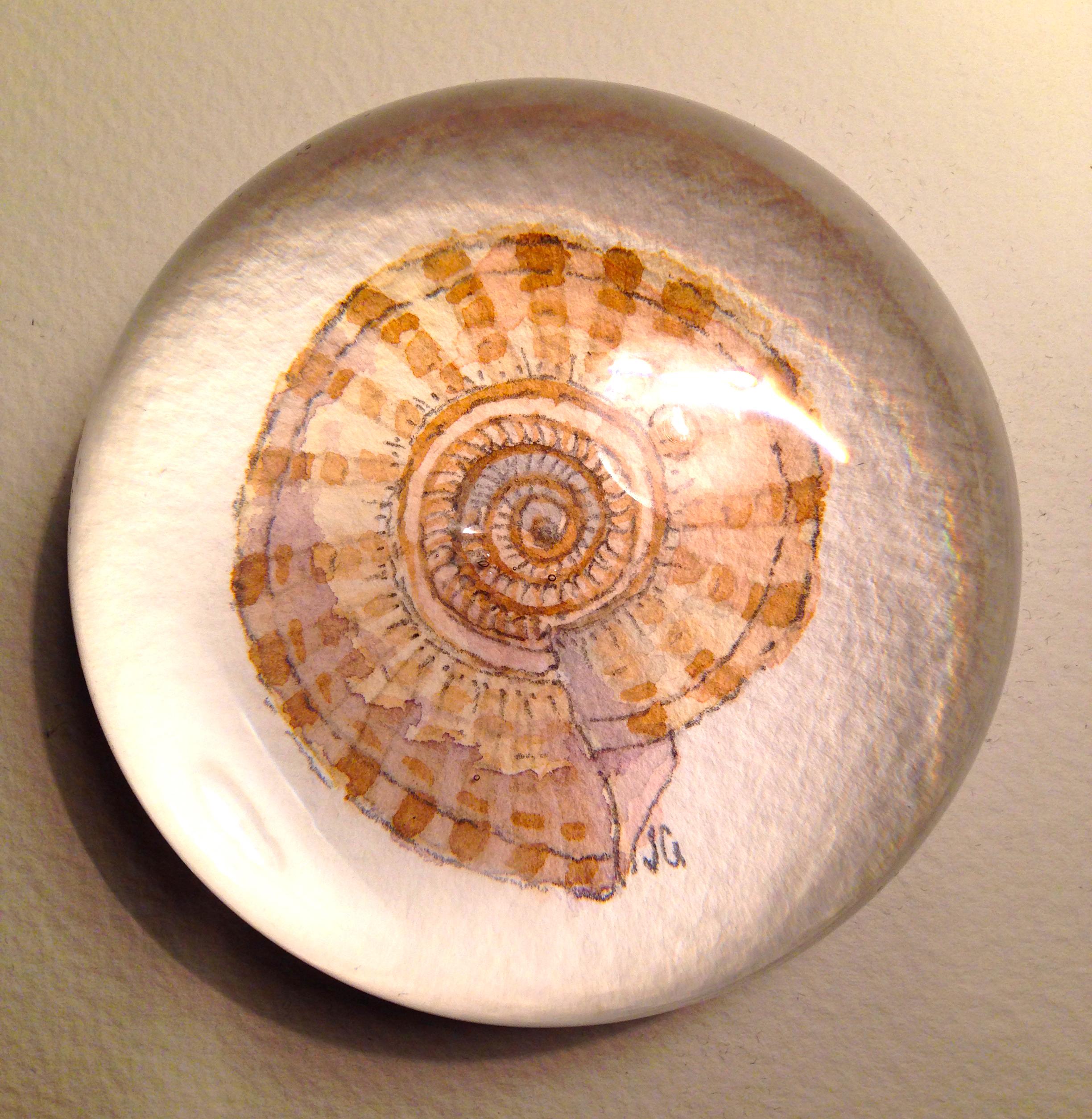 shell weight 3.jpg