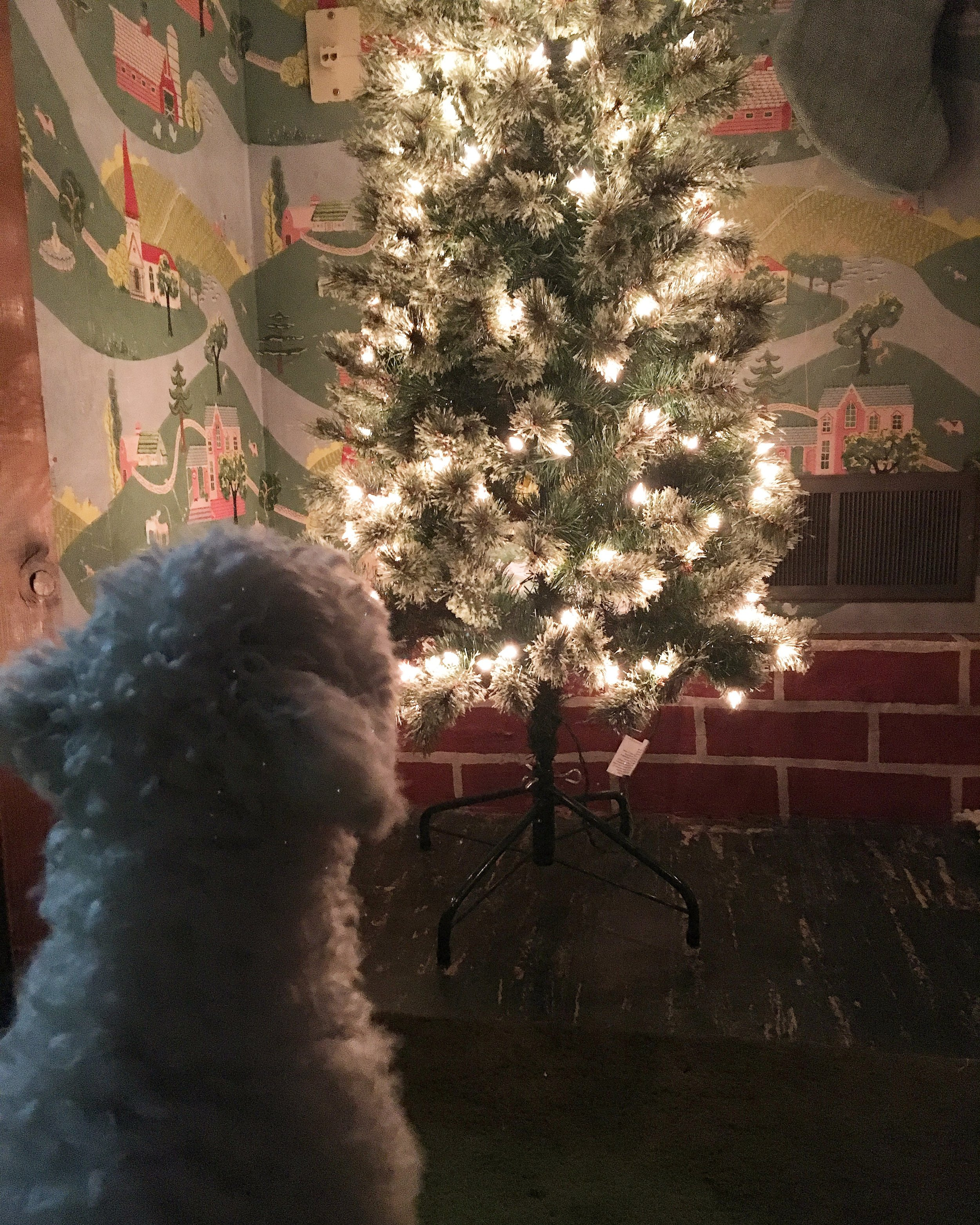 puppy's first christmas   christmas tree   sadie banks photography