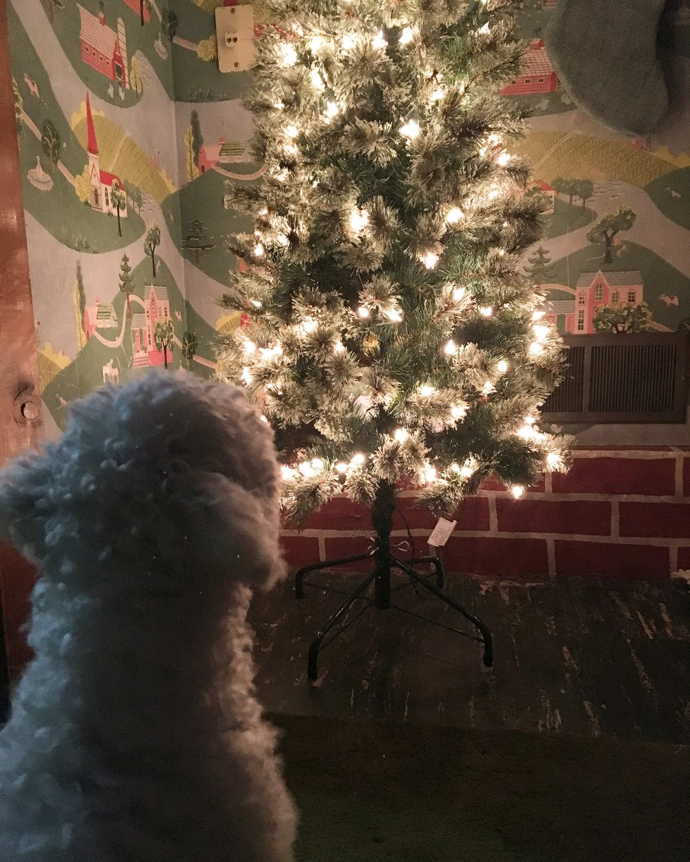 puppy's first christmas | christmas tree | sadie banks photography