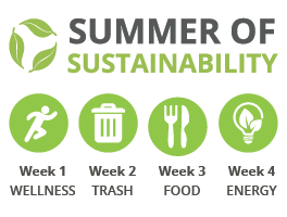 Summer of Sustainability