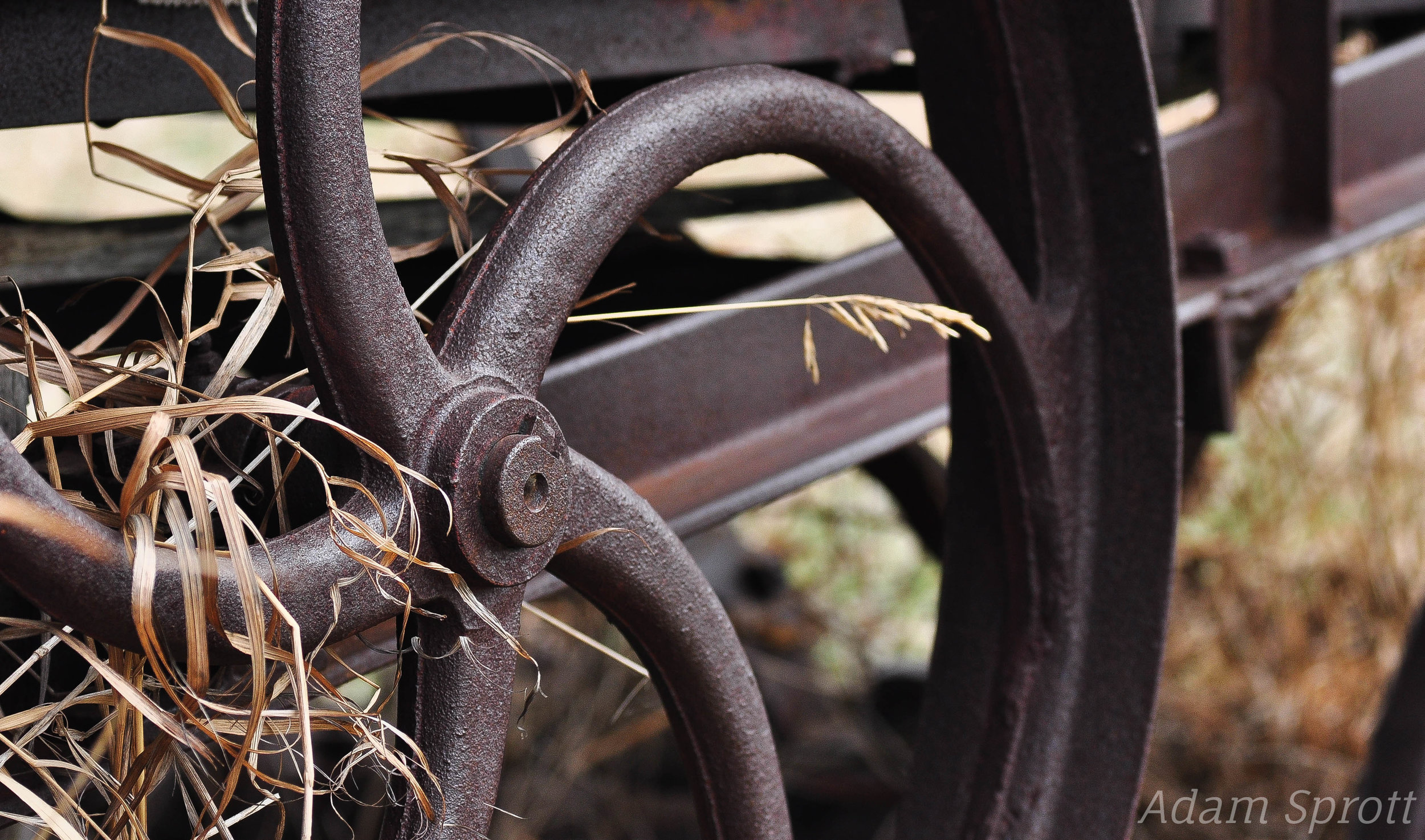 Left to Rust.jpg