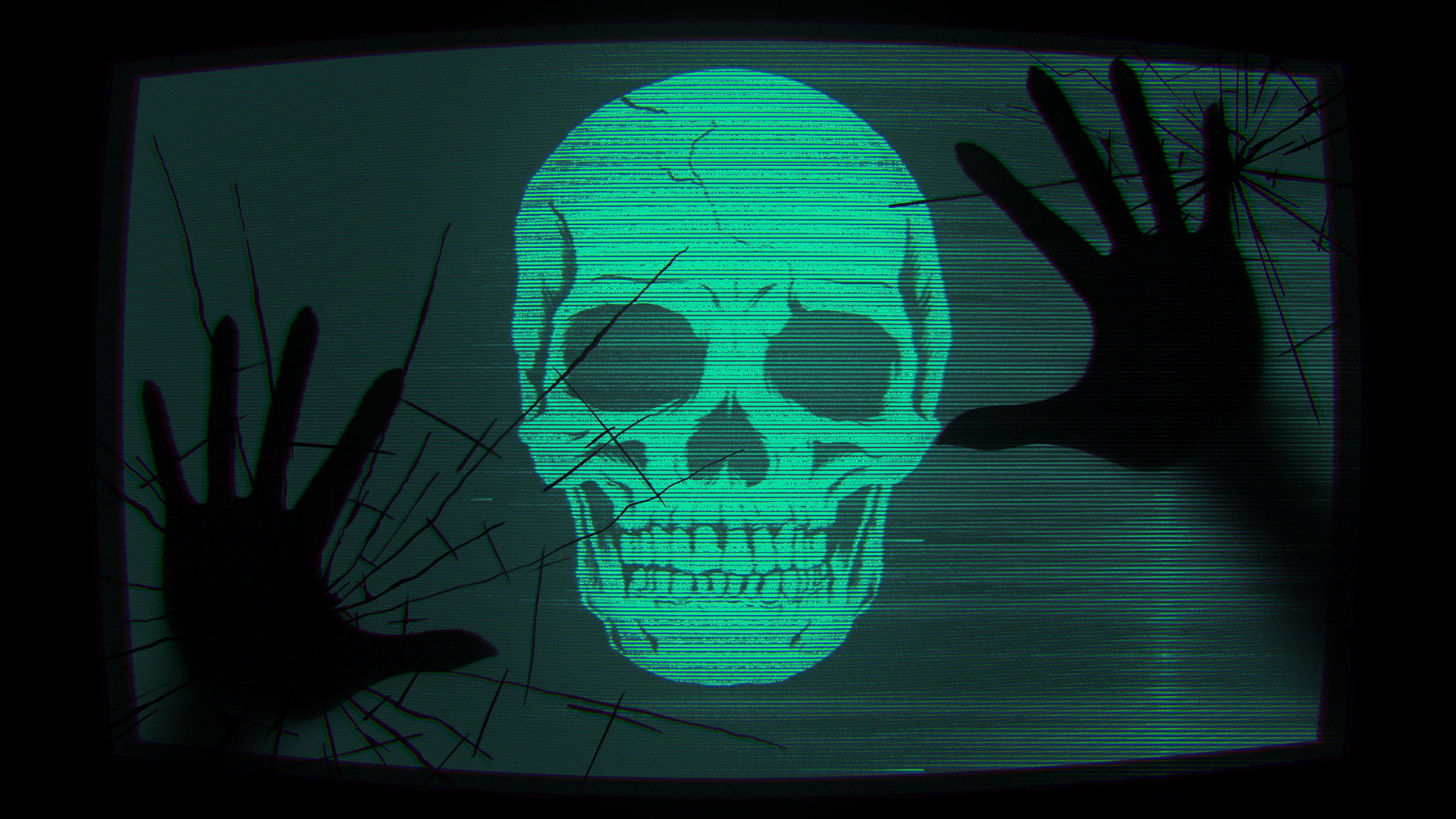 Kaiwachi_skull_1