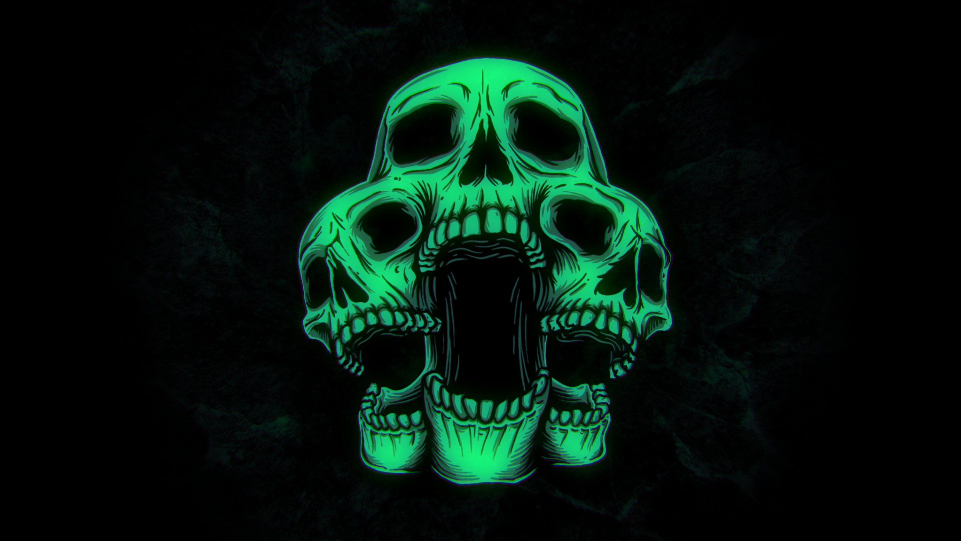 Kaiwachi_skull_2