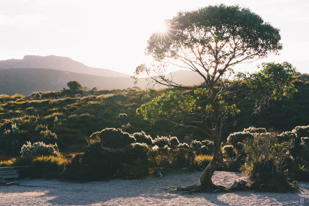 Melissa_Findley-Broadsheet_Tasmania-WEB-2