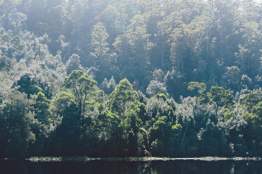 Melissa_Findley-Broadsheet_Tasmania-WEB-36