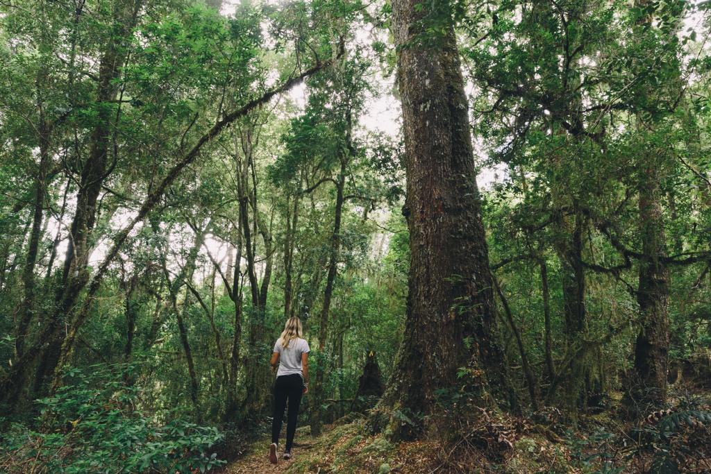Melissa_Findley-Broadsheet_Tasmania-WEB-5