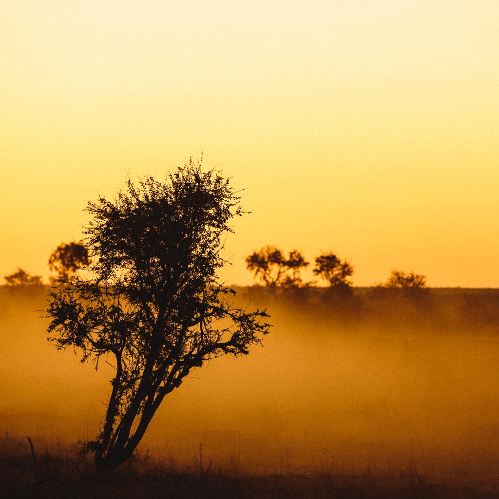 Melissa_Findley-Townsville-Blog--46