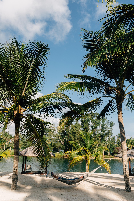 Melissa_Findley-Vanuatu-MFBlog-93