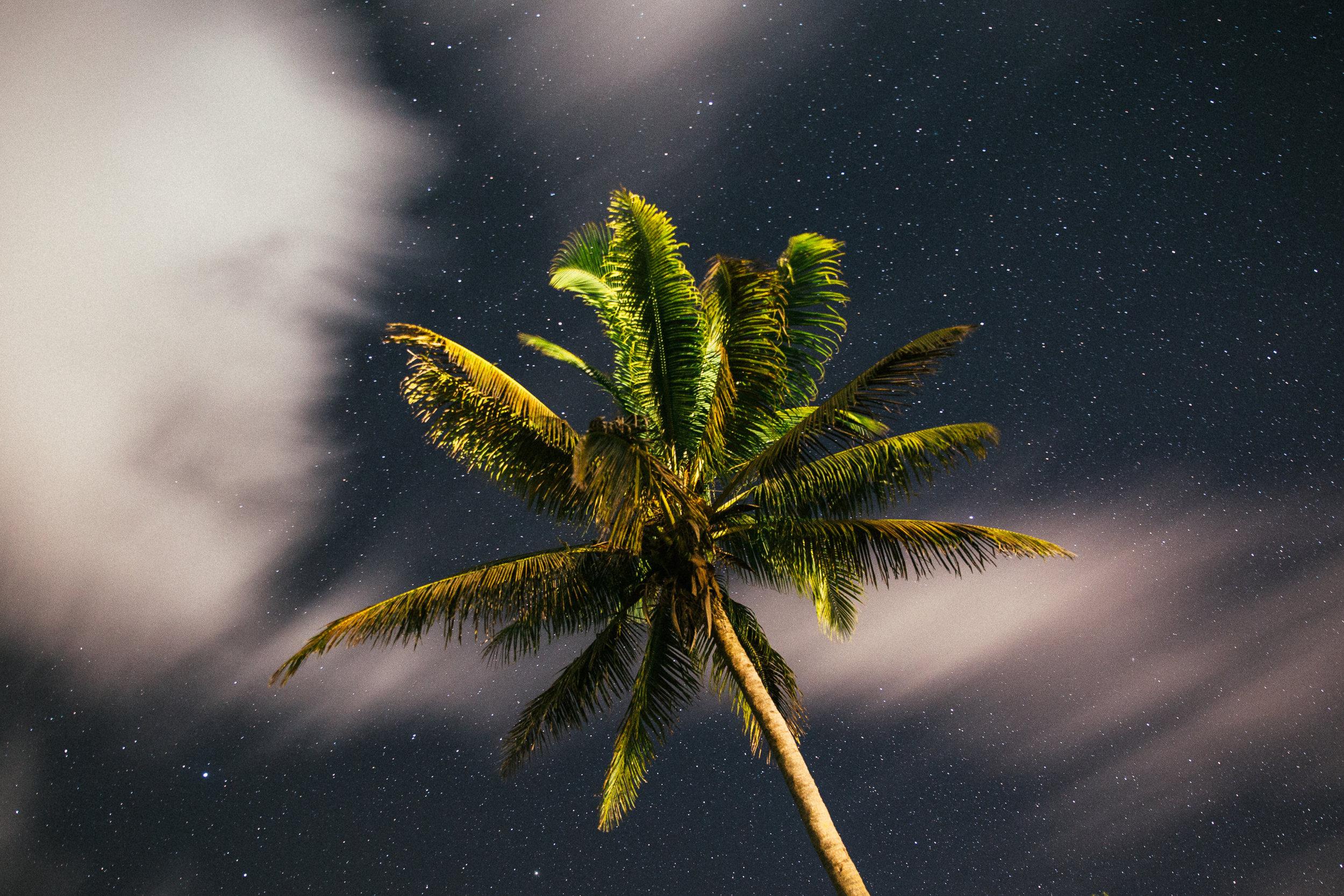 Melissa_Findley-Vanuatu-MFBlog-96