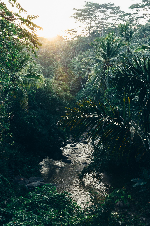 Melissa_Findley-Bali-Blog-52