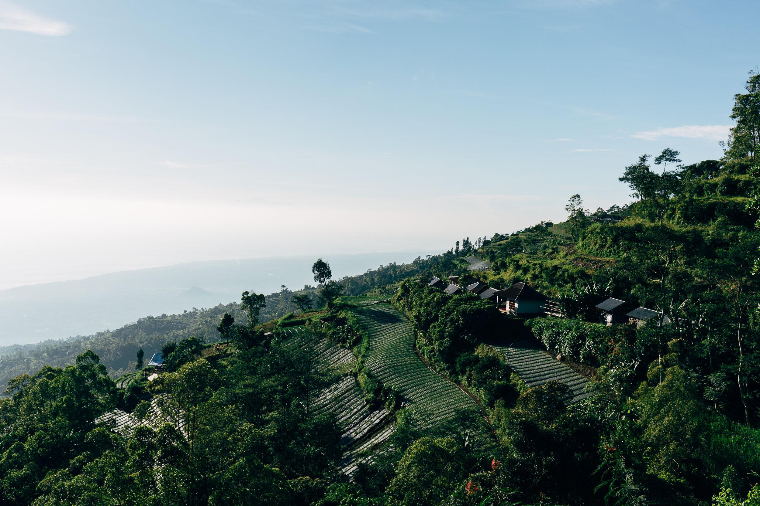 Melissa_Findley-Bali-Blog-64