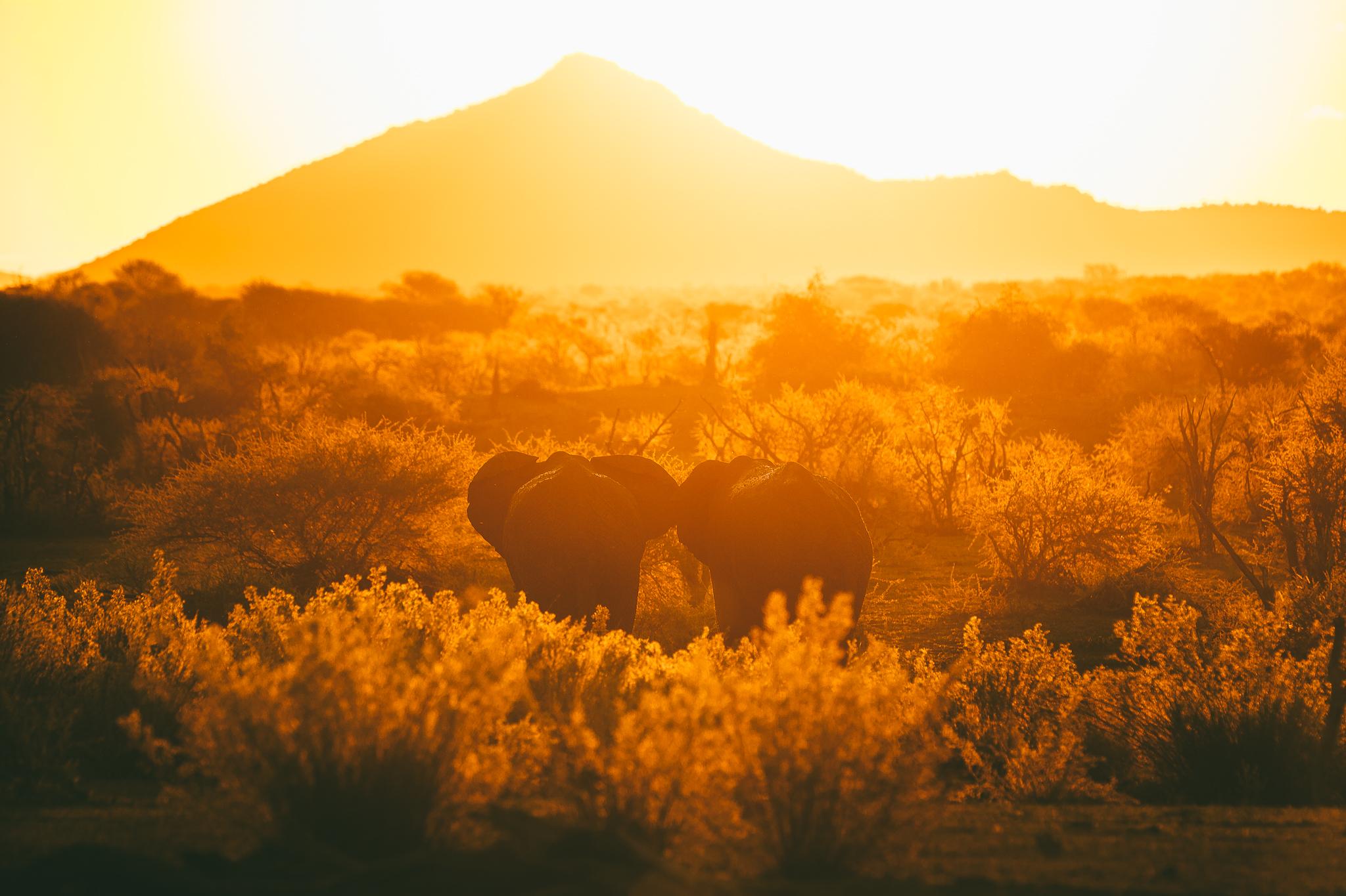 Melissa_Findley-SouthAfrica-Blog-06.jpg